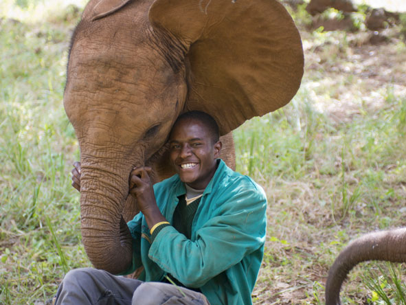 Elephant Handlers