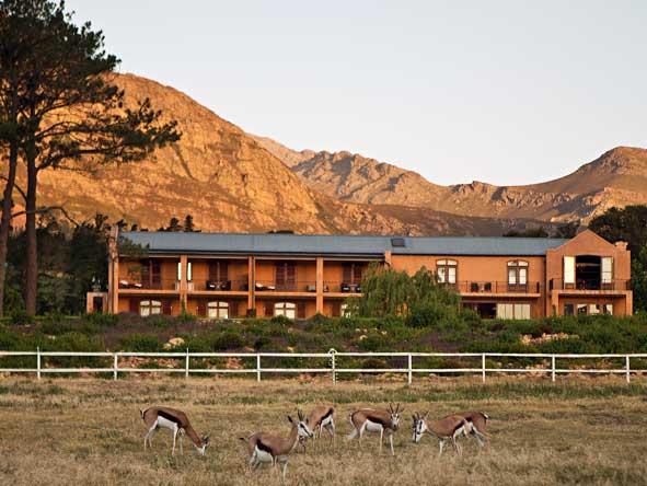 springbok, la residence