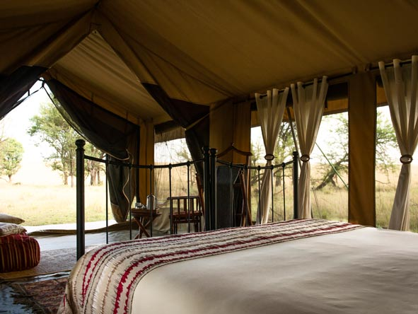 Views of the serengeti from tent