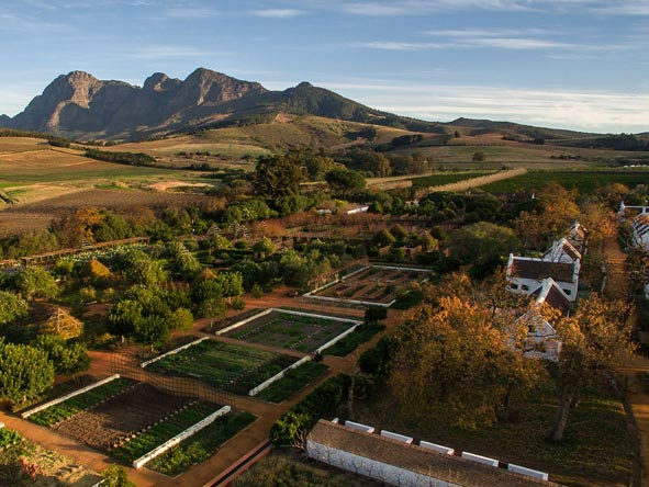 Aerial view of babylonstoren