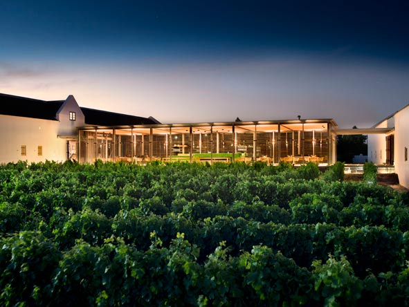 The tasting room at babylonstoren