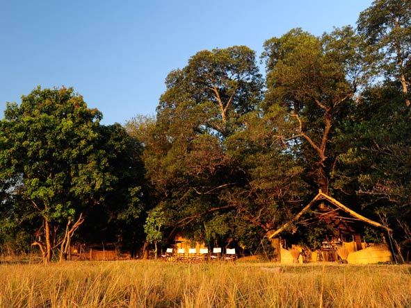 Luwi Bush Camp, South Luangwa National Park