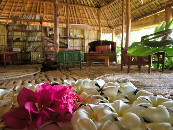 eco-friendly decor, mumbo island camp