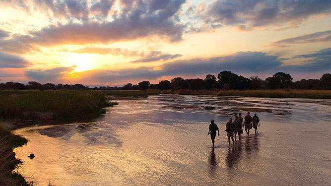 An Insider's Guide to Walking in The South Luangwa