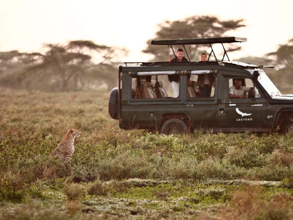 Game Drives, Serengeti