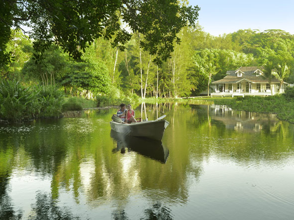 row boat, Banyan Tree