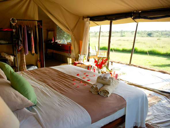 encounter mara, bedroom tent