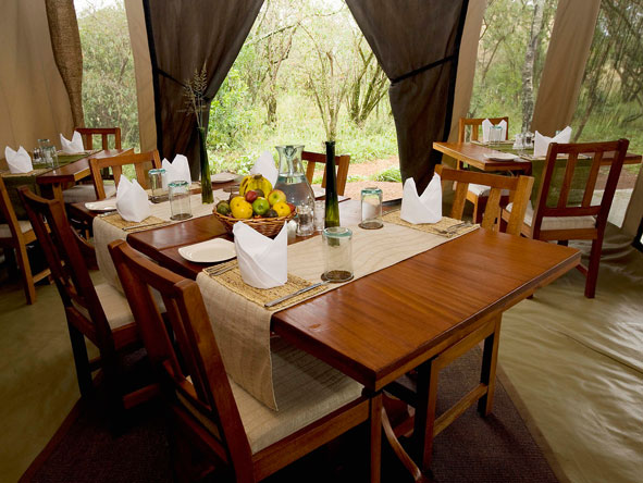 encounter mara, dining tent