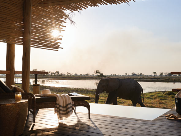 Belmond Eagle Lodge, Elephant
