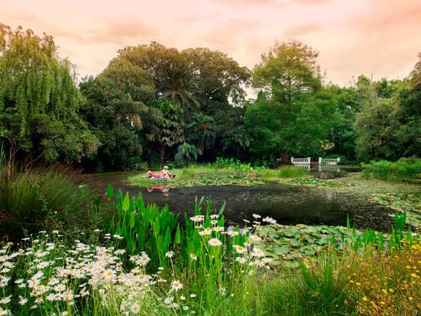 Fancourt, gardens