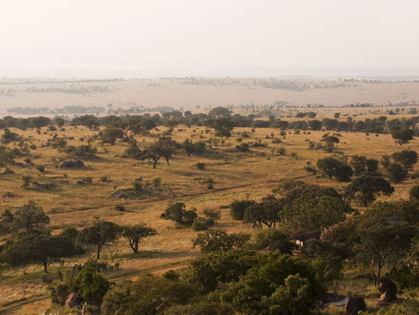 The Lamai Region, Serengeti