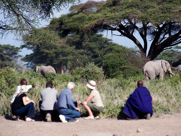 Maramboi Tented Camp, guided walking safari