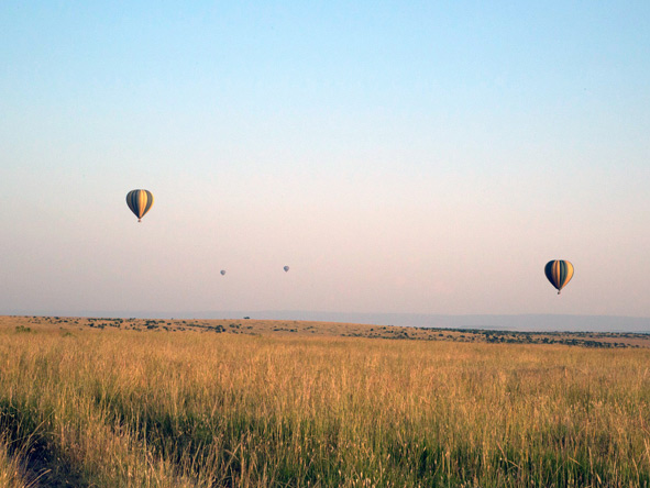 Hot air ballooning in the masai mara
