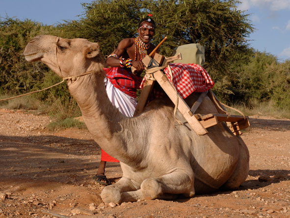 camel rides in Kenya