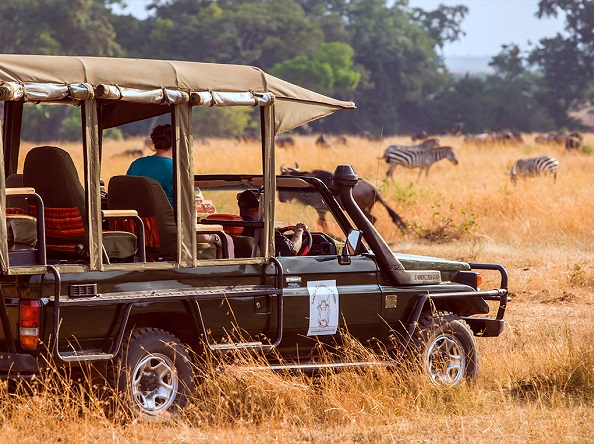 Nasikia Mobile Migration Camp - Game drive