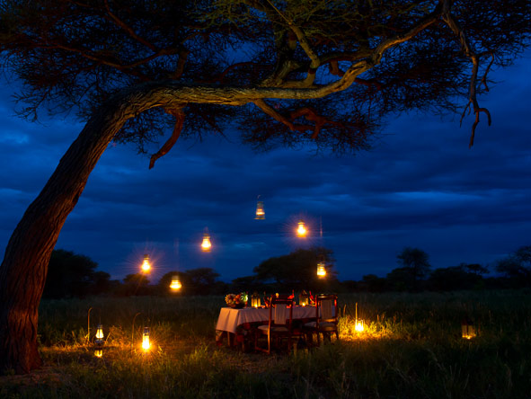 Dinner under the stars, serengeti
