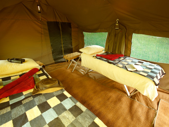 Tented suite, moremi game reserve