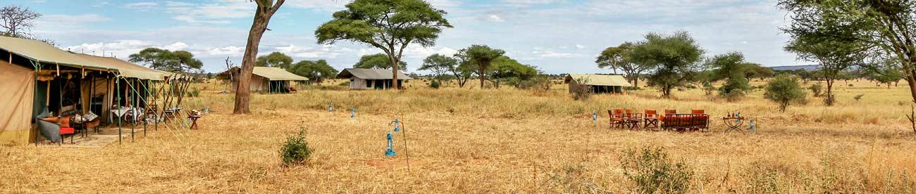 Ndovu Camp, Tanzania