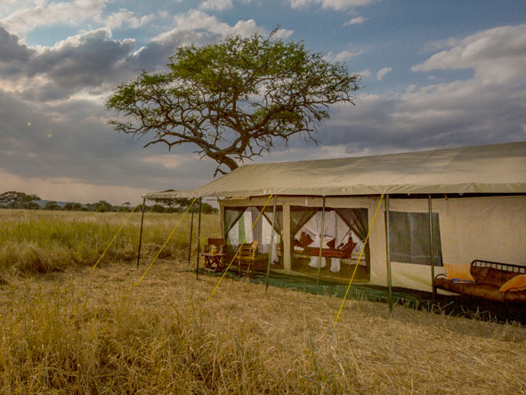 tented suites at Ndovu Camp