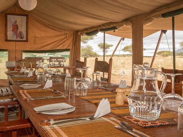 gourmet dining on safari