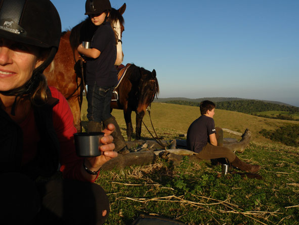 Horse riding, hog hollow