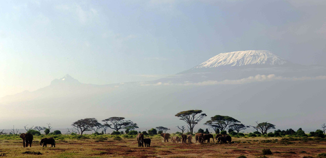 Where to Safari- Kilimanjaro