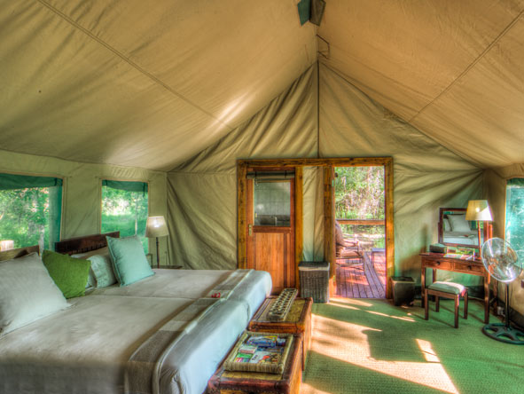 Camp Moremi Suite