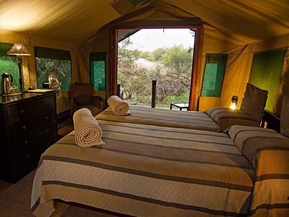Down-to-earth tented suites