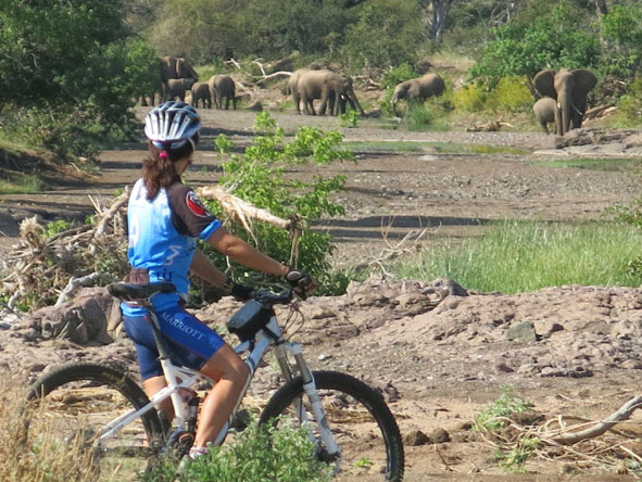 Cycling and biking expeditions