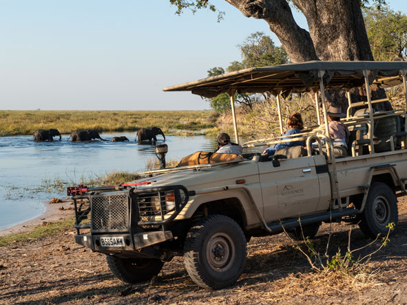 Game drives at Linyanti