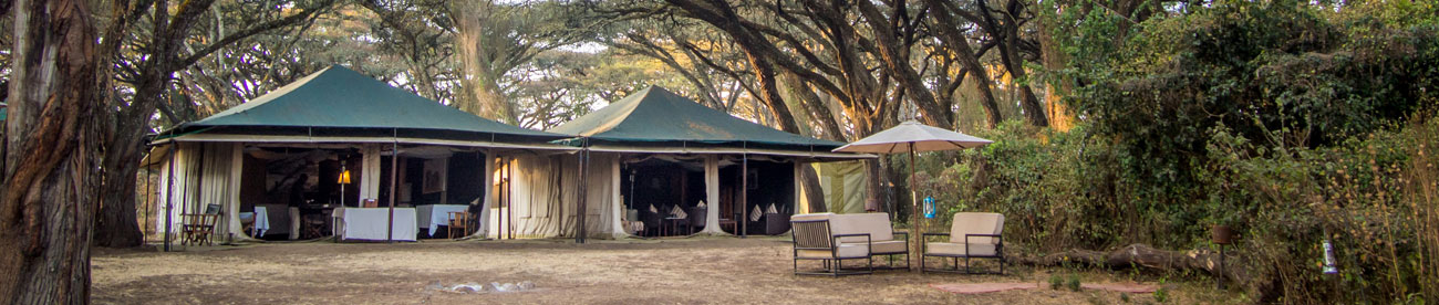 Sanctuary Ngorongoro Crater Lodge