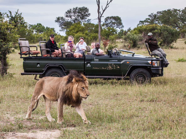 Safaris Notten's Bush Camp