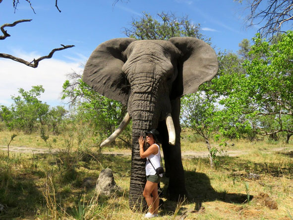 Tatham Botswana