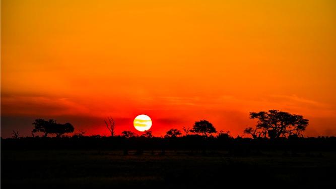 Picture 2- Shachrai, Botswana