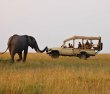 A safari & beach break in East Africa - similar