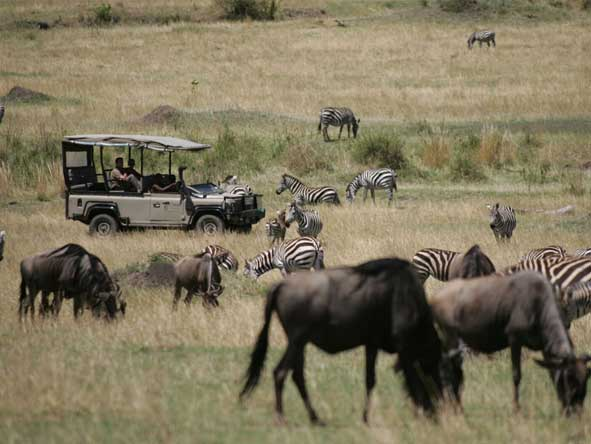 Saruni Mara game viewing