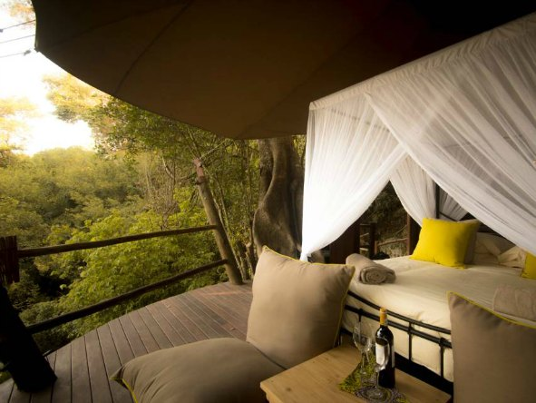 Treehouse suites