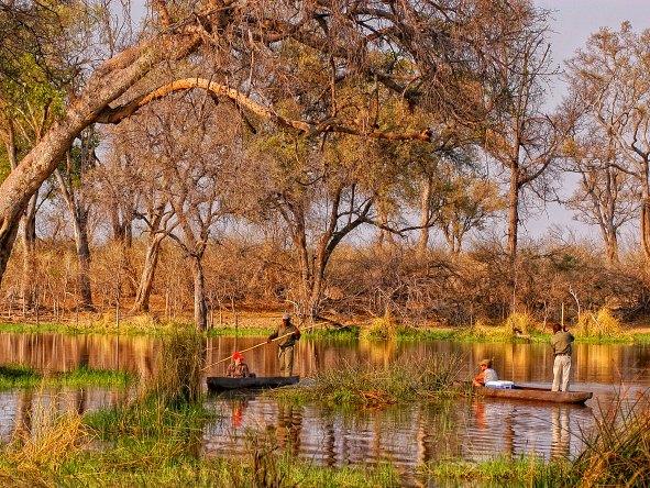 African Bush Camps: Khwai & Linyanti