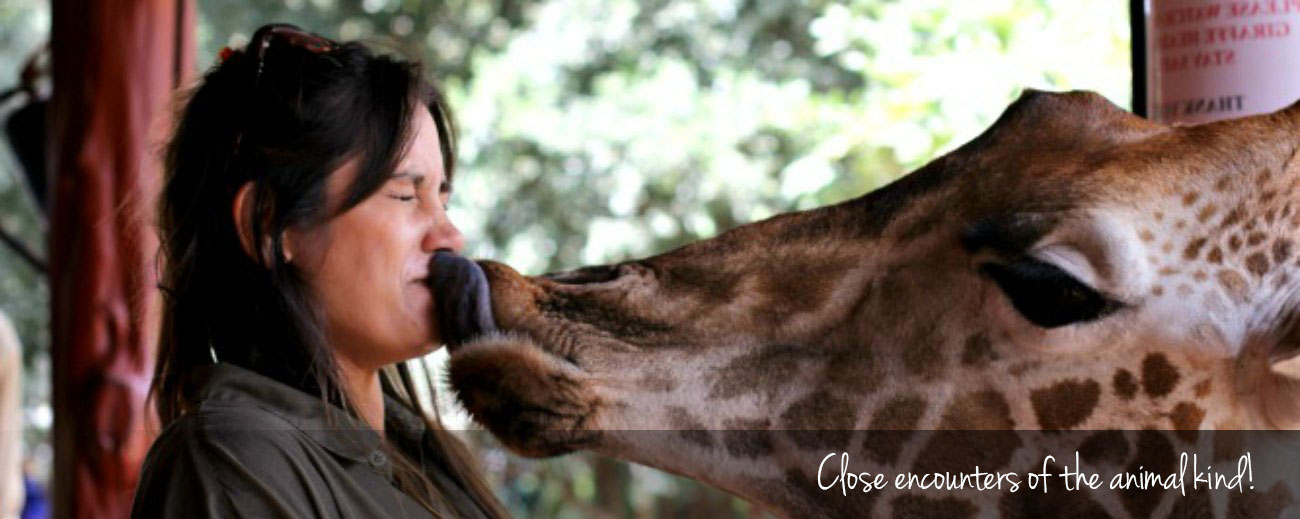 How to have Ethical Animal Encounters in Africa