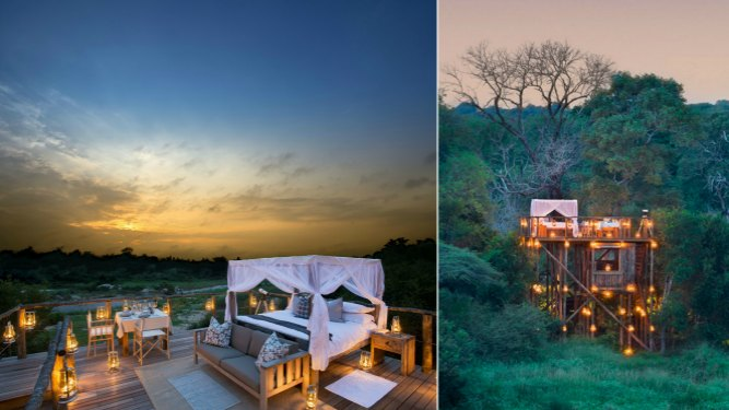 Africa's Top Treehouses & Forest Lodges