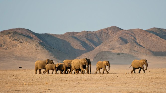 The top 4 natural wonders of secret Africa