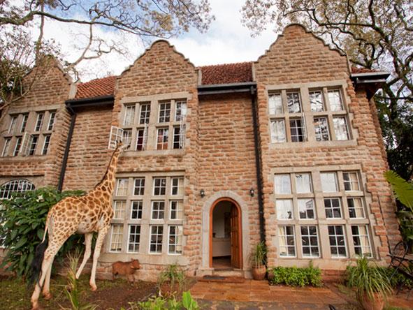 Family Kenya & Seychelles