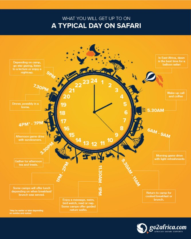 [Infographic]: What happens on safari