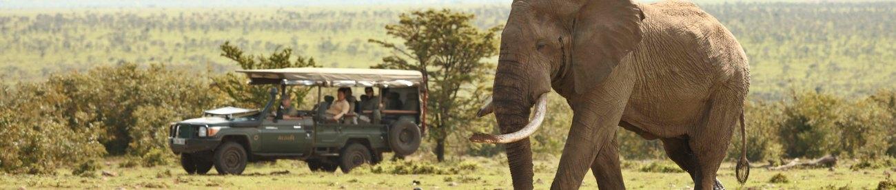 EAST AFRICA'S TARANGIRE, SERENGETI & MASAI MARA