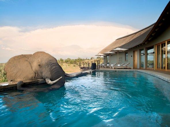 Mhondoro Lodge