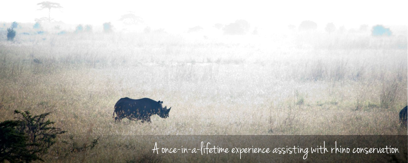 Rhino notching in South Africa - a soul-stirring experience