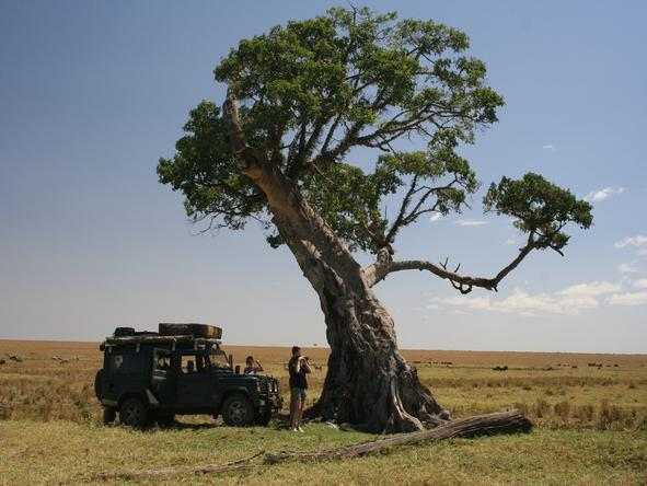 Amboseli & Mara Wilderness Safari