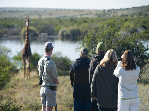 Winelands, Garden Route & Safari Family Holiday