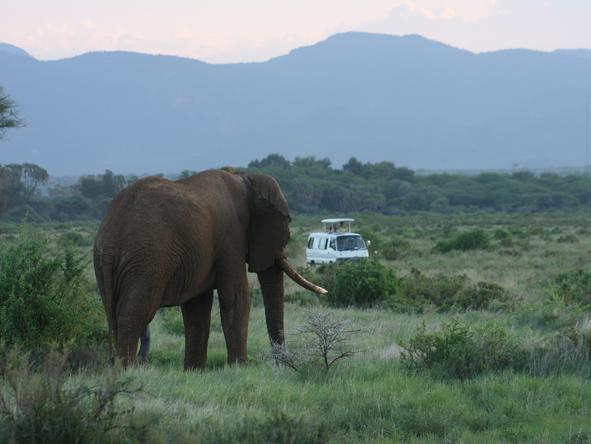 Comprehensive Kenya & Tanzania Expedition