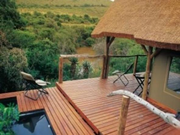 Bayethe Tented Lodge - Private Plunge Pool